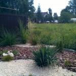 Trawy ozdobne, iglaki i juka